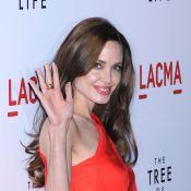 Angelina Jolie et Yannick Noah : Pour vous, ce sont les plus torrides...