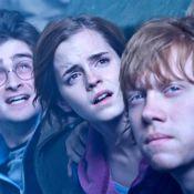 Harry Potter et les Reliques de la Mort 2 : Le box-office est déjà ensorcelé