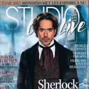 Sherlock Holmes 2 : ''Holmes et Watson sont clairement amoureux''