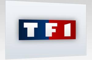 TF1 : Deux séries pour contrer Scènes de ménages et Plus belle la vie