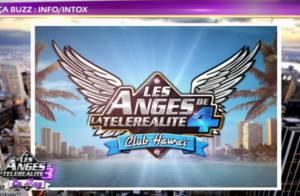 Anges de la télé-réalité 4, Club Hawaï : Un ex-Nouvelle Star rejoint le casting