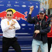 Gangnam Style : Sebastian Vettel et Mark Weeber à leur tour contaminés