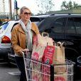 Katherine Heigl a rempli son caddie à Los Angeles, le 10 novembre 2012.