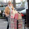 Katherine Heigl fait ses courses en tenue décontractée dans le quartier de Los Feliz à Los Angeles, le 10 novembre 2012.