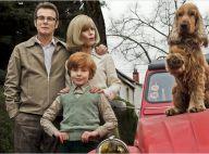 Boule et Bill, 20 ans d'écart, Jappeloup... Les films français cartonnent !