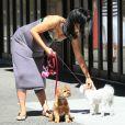 Hilaria Thomas enceinte, et ses chiens, dans les rues de New York, le 15 août 2013.