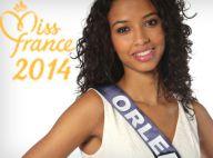 Miss France 2014 : Audiences, tweets... La cérémonie de tous les records !