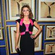 Stana Katic lors des Writers Guild Awards à Los Angeles le 1er février 2014