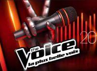 The Voice 3 : Qui sauvera sa peau de la dernière élimination avant les directs ?
