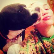 Miley Cyrus : Déprimée et en deuil, elle annule un show à la dernière minute