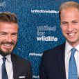 David Beckham et le prince William, complices de choc, ont lancé, le 9 juin 2014 à Londres, une campagne de sensibilisation à la préservation de la faune sauvage sous l'égide de United for Wildlife.