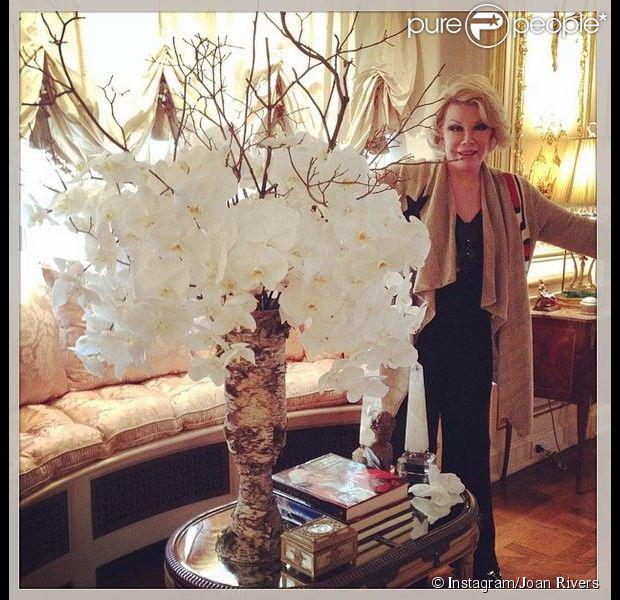 L 39 appartement de joan rivers vu dans un pisode son show for Dans joam