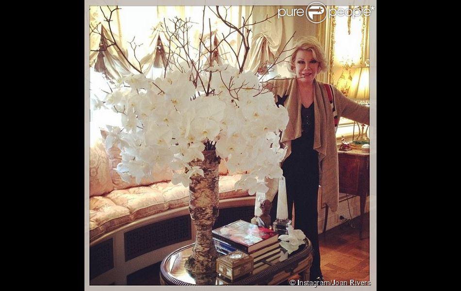 Joan rivers d couvrez son extraordinaire appartement de for Dans joam
