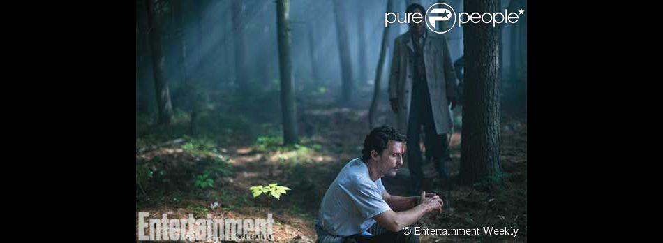 Première image de Sea of Trees, film de Gus van Sant avec Matthew McConaughey. (Crédit : Entertainment Weekly)