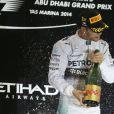 Lewis Hamilton a été sacré champion du monde de Formule 1 lors du Grand Prix d'Abou Dhabi, le 23 novembre 2014, aux Emirats Arabes Unis.