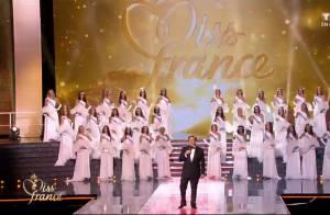 Miss France 2015 : Les 33 Miss divines et surprises par Kev Adams !