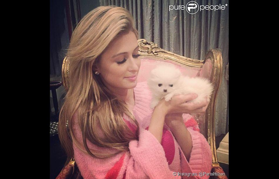 Paris Hilton pose avec son nouveau chiot, pour lequel elle cherche toujours un prénom...
