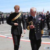 Le prince Harry et le prince Charles se croisent en Turquie, avant le royal baby