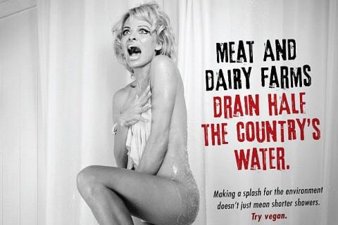 Pamela Anderson nue : La célibataire rejoue une scène culte pour la PeTA