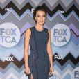Natalie Zea - Soirée FOX Winter TCA All-Star à Los Angeles, le 8 janvier 2013