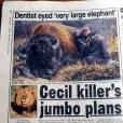 Couverture d'un quotidien titrant sur la mort de Cecil, le lion adoré, au Zimbabwe,.