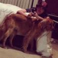 Ryan Malgarini a rajouté une photo de lui en compagnie de son chien sur sa page Instagram