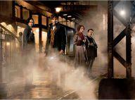 """""""Les Animaux Fantastiques"""" : La bande-annonce du spin-off d'""""Harry Potter"""""""