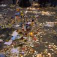 Hommages aux victimes de l'attentat terroriste du Bataclan, devant la salle de spectacle à Paris, le 16 novembre 2015.