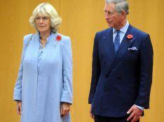 REPORTAGE PHOTO : Le prince Charles et Lady Camilla sont bien arrivés au Japon... Enfin, presque !