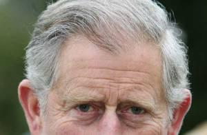Le Prince Charles, avec son staf de 111 personnes et ses revenus très élevés, a vraiment une vie royale !