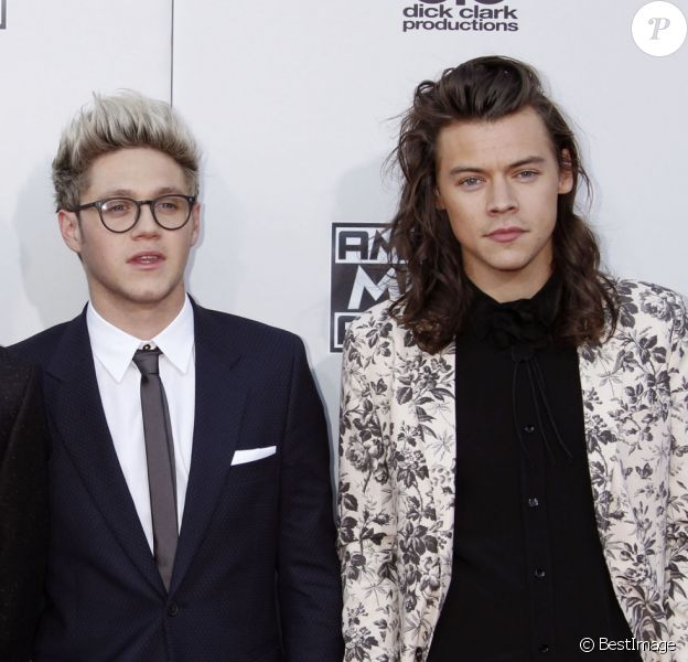 "Liam Payne, Louis Tomlinson, Niall Horan et Harry Styles du groupe One direction à la 43ème cérémonie annuelle des ""American music awards"" à Los Angeles le 23 novembre 2015."