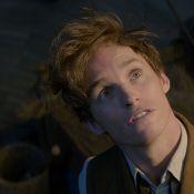 """Harry Potter: J.K. Rowling annonce quatre films après """"Les Animaux fantastiques"""""""