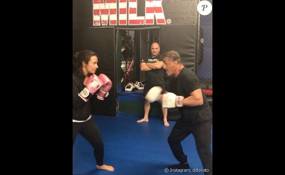 Demi Lovato affronte Sylvester Stallone lors d'un combat de boxe dont la vidéo a été publiée sur sa page Instagram, le 2 novembre 2016