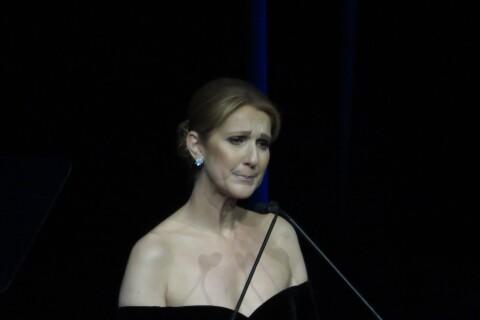 Céline Dion : Du deuil à la consécration, son année émouvante en vidéo