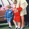 """"""" La princesse Diana avec le prince Harry et le prince William à Windsor en juillet 1987 lors d'un match de polo. """""""