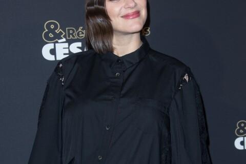 """César 2017 : Marion Cotillard absente pour cause de """"maternité imminente"""""""