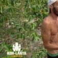 """Koh-Lanta Cambodge"", épisode du 2 juin 2017 sur TF1."