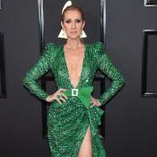 Céline Dion : Ses 10 tenues les plus marquantes de l'année !
