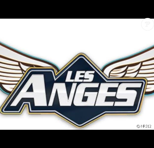 """Logo des """"Anges"""", NR12"""