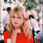 """Brigitte Bardot : """"Il y a beaucoup d'actrices qui font les allumeuses"""""""
