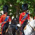 """Illustration - Les membres de la famille royale britannique lors du rassemblement militaire """"Trooping the Colour"""" (le """"salut aux couleurs""""), célébrant l'anniversaire officiel du souverain britannique. Cette parade a lieu à Horse Guards Parade, chaque année au cours du deuxième samedi du mois de juin. Londres, le 9 juin 2018."""