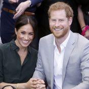 Prince Harry et Meghan Markle : Grands secrets autour de leur chien !
