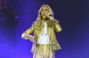 Céline Dion : Cet artiste inattendu avec lequel elle devrait collaborer...