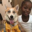 La petite Estera et le chien Alaske - Madonna pour Noël, décembre 2018.