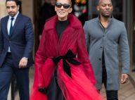 Céline Dion superbe dans un look de gala pour applaudir Chicago
