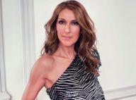 Céline Dion dévoile les détails de son arrivée chez L'Oréal !