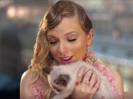 Taylor Swift adopte un nouveau chaton et lui donne un drôle de nom