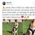 La chanteuse Alma a partagé des photos de son chien, perdu à Paris, le 12 mai 2019