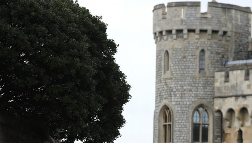 La princesse Anne, Lady Frederick Windsor (Sophie Lara Winkleman) et le prince Harry - Mariage de Lady Gabriella Windsor avec Thomas Kingston dans la chapelle Saint-Georges du château de Windsor le 18 mai 2019.