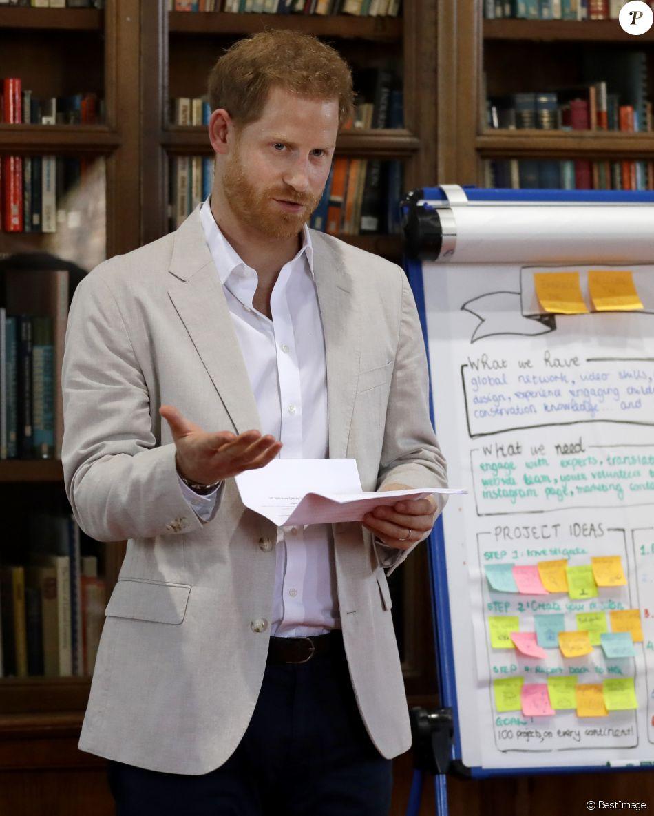 Le prince Harry, duc de Sussex, s'entretient avec le Dr Jane Goodal dans le cadre se son programme Roots & Shoots Global Leadership au chateau de Windsor dans le Berkshire, le 23 juillet 2019.